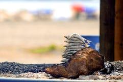 Sardiner på ett steknålvedträ på stranden i Malaga, Spanien Arkivfoton