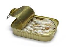 sardines Arkivbilder