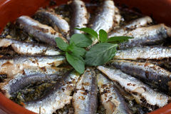 Sardines baked in a terracotta bowl Royalty Free Stock Image
