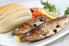 Sardines with bread and tomato on a plate Stock Image