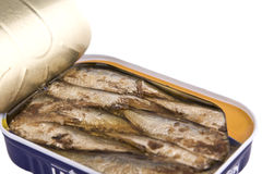 Sardines in a can Royalty Free Stock Photography