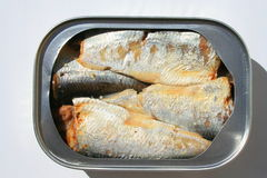 Sardines in a Can Stock Photo