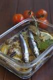 Sardines carpaccio with Mediterranean herbs Royalty Free Stock Image