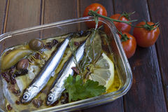Sardines carpaccio with Mediterranean herbs Royalty Free Stock Photos