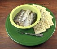 Sardines dans une cuvette photographie stock