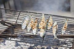 Sardines die geroosterde, openluchtkoffie krijgen Stock Afbeelding