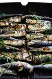 Sardines in een pan met kruiden en rozemarijn wordt geroosterd die Royalty-vrije Stock Afbeeldingen