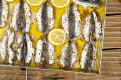 Sardines fillet Royalty Free Stock Photos