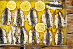 Sardines fillet Royalty Free Stock Photography