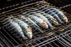 Sardines in a fish grilling being cooked in a bbq. royalty free stock photography