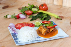 Sardines fish in tomato sauce stock images