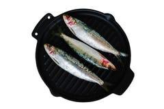 Sardines fraîches sur la poêle de fonte Photographie stock libre de droits