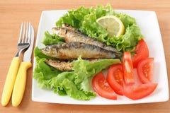 Sardines frites avec de la salade Images stock