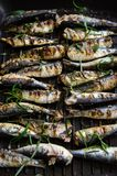 Sardines in a frying pan grilled with spices and rosemary. Tasty and delicious sea food cuisine Stock Photos