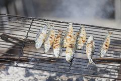 Sardines getting grilled, outdoor cafe. In summer in Porto, Portugal Stock Image