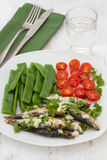Sardines with green beans and tomato Royalty Free Stock Image