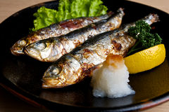 Sardines grillées japonaises. Images libres de droits