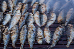 Sardines on grill on street bbq. hot tipical portugal food Royalty Free Stock Photography