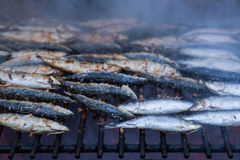 Sardines on grill on street bbq. hot tipical portugal food Stock Photos