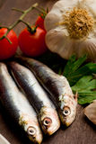 Sardines - Ingredients Royalty Free Stock Images