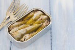 Sardines in iron box Stock Image