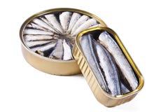 Sardines isolated Stock Photo