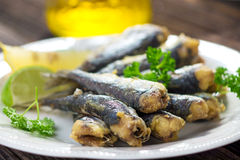 Sardines. With lemon and olive oil Stock Images
