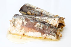 Sardines marinated in olive oil directly on background Royalty Free Stock Photos