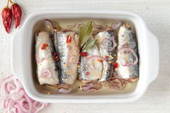 Sardines in oil with onion and chili Royalty Free Stock Images