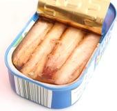 Sardines in oil. Some fresh sardines in oil Stock Image