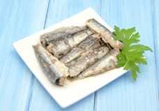 Sardines in olive oil Stock Images