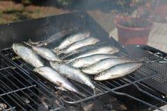 Sardines op een barbecue Stock Afbeelding