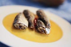 Sardines op een plaat Stock Foto