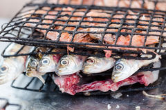 Sardines op het roosteren in bistro in Essaouira worden voorbereid die po vissen die Royalty-vrije Stock Afbeelding