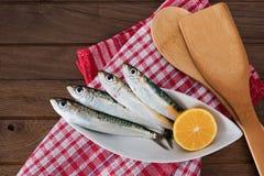 Sardines op witte plaat Stock Foto