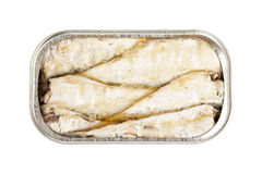Sardines in open tin. Isolated on white background with clipping path Stock Photography