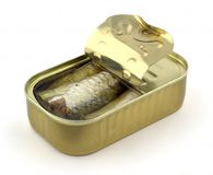 sardines på burk Arkivbild