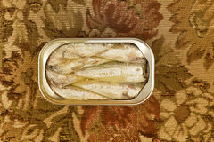 Sardines packed in olive oil Stock Photos