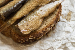 Sardines on a piece of bread Royalty Free Stock Photo