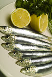 Sardines on plate with lemon and parsley. Sardines fish on plate with lemon and parsley royalty free stock photo