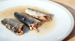 Sardines on a plate. Royalty Free Stock Photography
