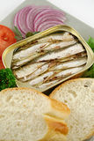 Sardines And Salad Royalty Free Stock Image