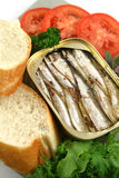 Sardines And Salad Royalty Free Stock Photography