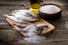 Sardines with salt Stock Image