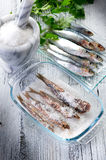 Sardines with salt Royalty Free Stock Photos