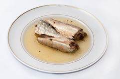 Sardines served on the white plate Royalty Free Stock Photography