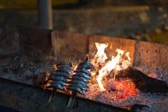 Sardines skewer at night Royalty Free Stock Image