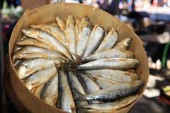 Sardines on Street Market stock image