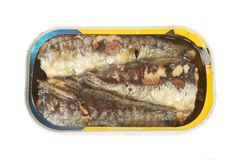 Sardines in a tin. Isolated against white Stock Images