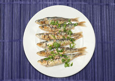 Sardines to the grill Royalty Free Stock Images
